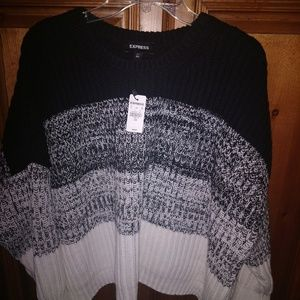 New Express Oversized Sweater